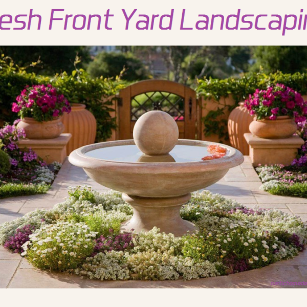 fresh front yard landscaping